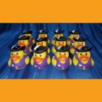 12 Captain Girl Pirate Rubber Ducks Purple Heart