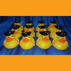 12 Captain's First Mate Pirate Rubber Ducks