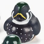 Fowl Decoy Rubber Ducks
