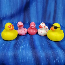 Mini Valentine's Day Ducks