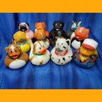 Fun Pack! 11 Dog and Puppy Rubber Ducks and 1 Boy