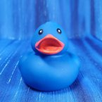Blue Floating Rubber Duck