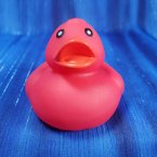 Red Floating Rubber Duck