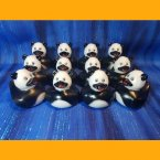 12 Zoo Animal Panda Rubber Ducky