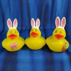 Bright Eyed Easter Bunny Ducks