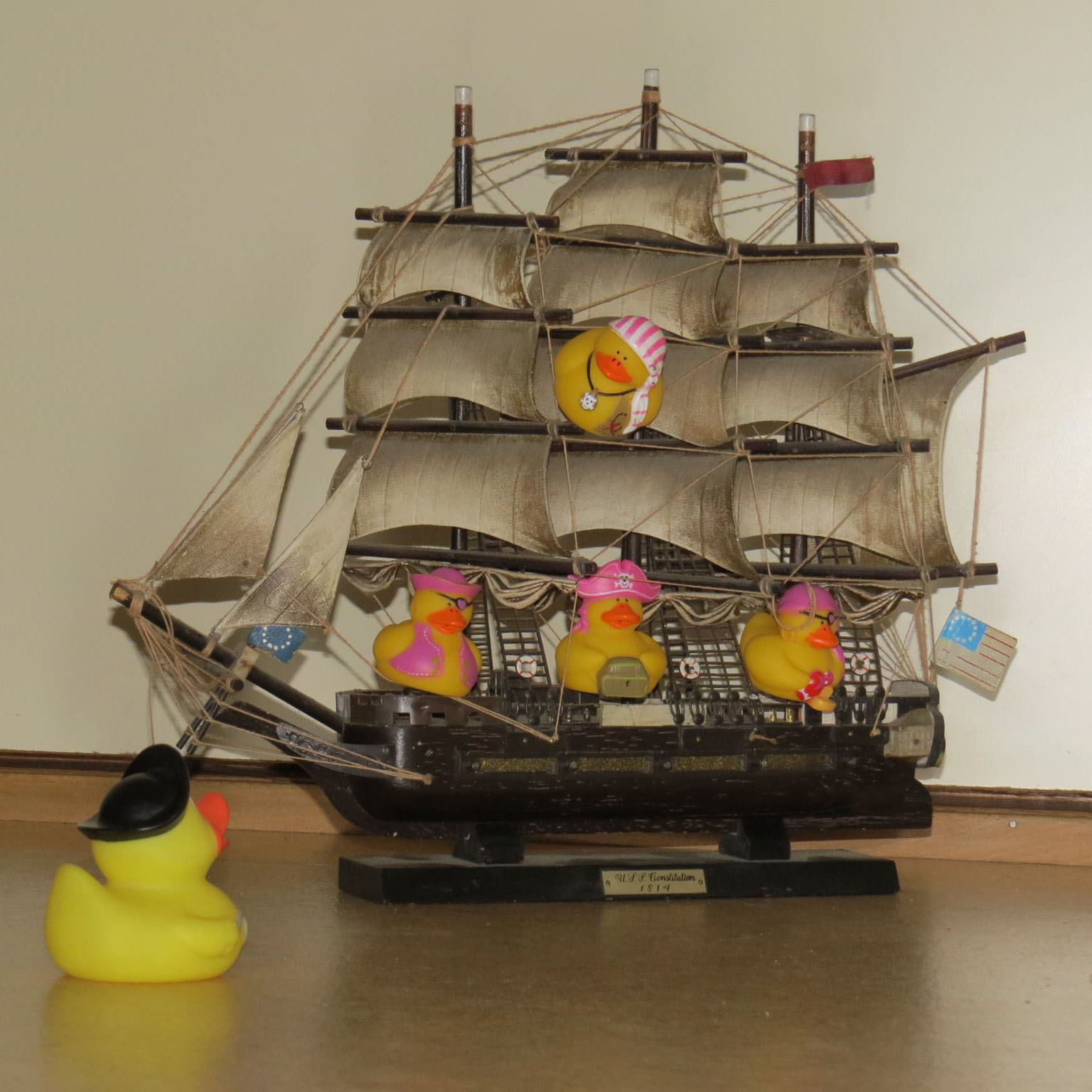 Lady Pirate Rubber Ducks - $5.00 : Ducks Only!, Exclusively Ducks