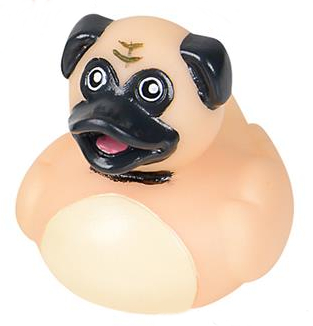 Dog Rubber Duck Set - Click Image to Close